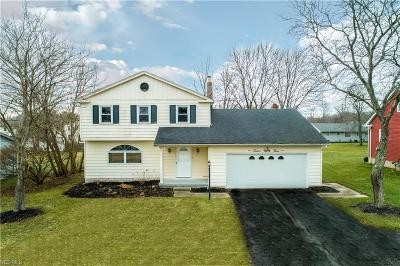 Youngstown Single Family Home For Sale: 1283 Shields Rd