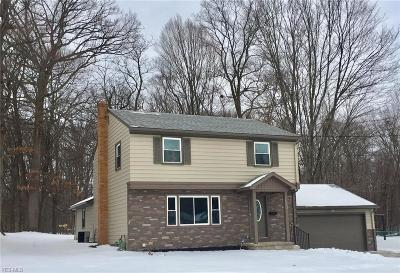 Youngstown Single Family Home For Sale: 3330 Kingston Ln