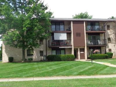 Middleburg Heights Condo/Townhouse For Sale: 16390 Heather Ln #T301