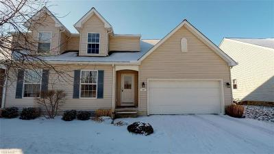 Fairport Harbor OH Condo/Townhouse For Sale: $199,900