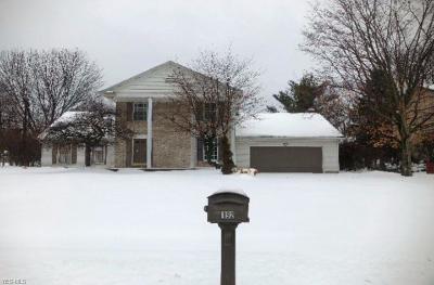 Youngstown Single Family Home For Sale: 192 Sugar Cane Dr