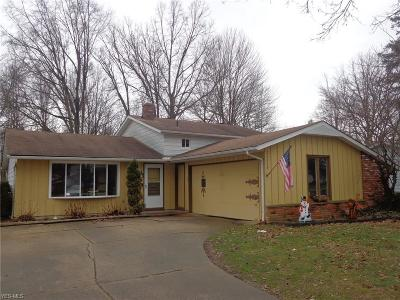 Strongsville Single Family Home For Sale: 22029 Jonathan Dr