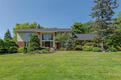 Pepper Pike Single Family Home For Sale: 31849 Chestnut Lane