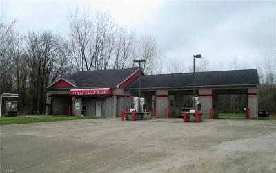 Perry County Commercial For Sale: 110 China St