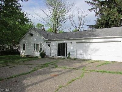 Aurora Single Family Home For Sale: 110 Townline Road