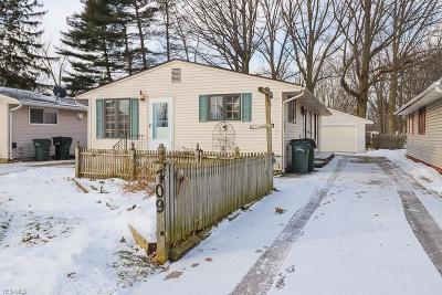 Elyria Single Family Home For Sale: 709 Abbe Rd South