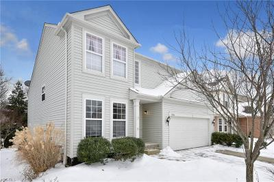 Olmsted Township Single Family Home For Sale: 9800 Nicole Ln