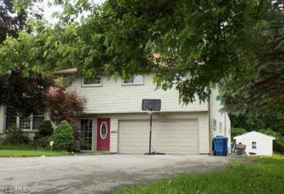 Struthers Single Family Home For Sale: 20 Henry Dr