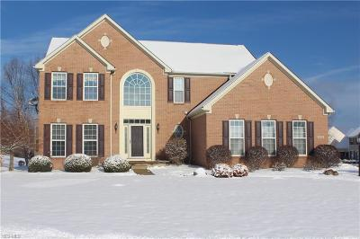 Summit County Single Family Home For Sale: 4789 Quincy Dr
