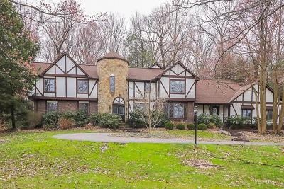 Lake County Single Family Home For Sale: 8279 Whitney Ln