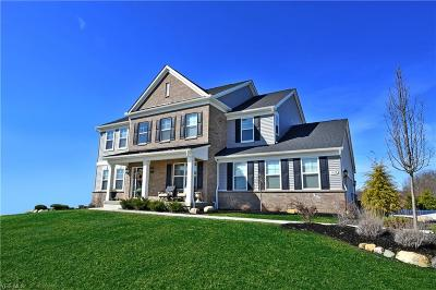Hudson Single Family Home For Sale: 5638 Timberline Trl