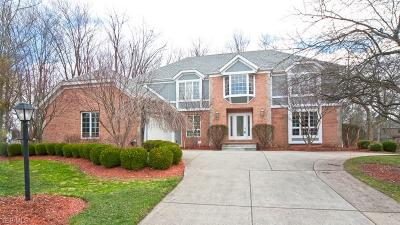 Strongsville Single Family Home For Sale: 19267 Westfield Ln