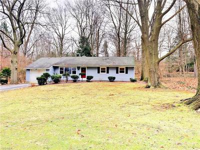 Painesville Township Single Family Home For Sale: 6447 Coleridge Rd