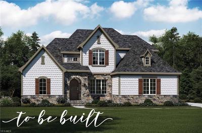 Wadsworth Single Family Home For Sale: 8615 Hunters Ridge Run