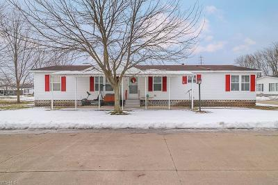 Elyria Single Family Home For Sale: 237 Gull Dr