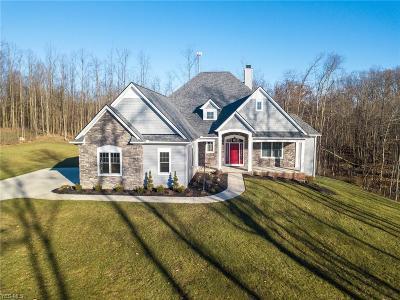 Medina Single Family Home For Sale: 4540 Sunset Cove