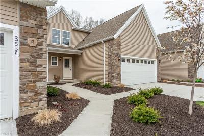 Lorain Single Family Home For Sale: 3568 Perry Ct #The Bris