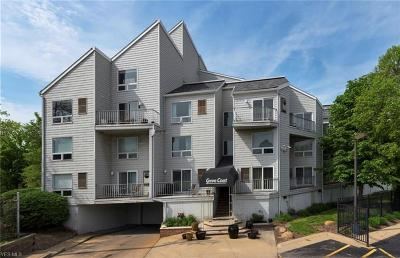 Ohio City Condo/Townhouse For Sale: 1900 Grove Ct #404