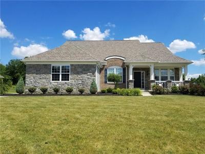 Hinckley Single Family Home For Sale: 715 Walden Pond Cir