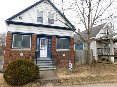 Elyria Single Family Home For Sale: 6273 West River Rd South