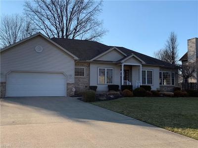Painesville OH Single Family Home For Sale: $259,900