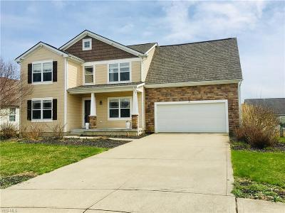 Licking County Single Family Home Active Under Contract: 141 Tyler Place