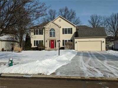 Olmsted Township Single Family Home For Sale: 28580 Glen Hollow Ln