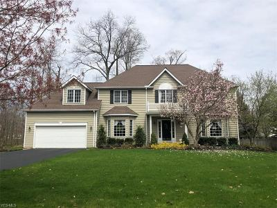 Chagrin Falls Single Family Home For Sale: 538 Manor Brook Dr