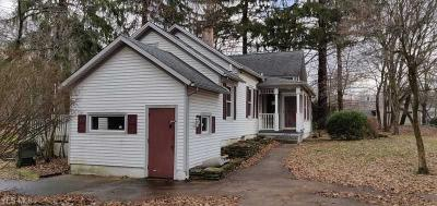North Olmsted Single Family Home For Sale: 4421 Martin Dr