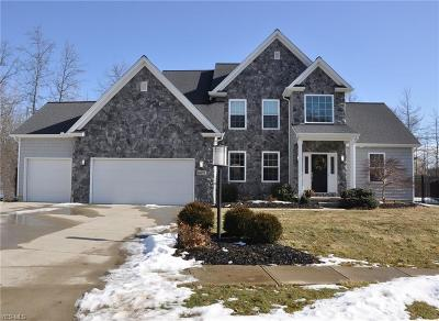 Single Family Home For Sale: 8571 Mulberry Chase