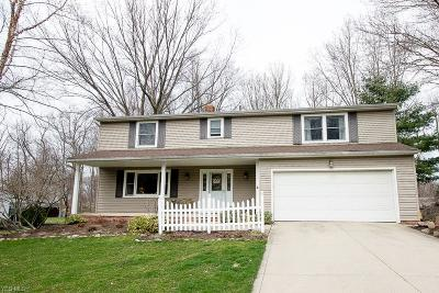 Concord Single Family Home For Sale: 10263 Cherry Hill Dr