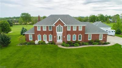 Medina Single Family Home For Sale: 680 Huntley Dr