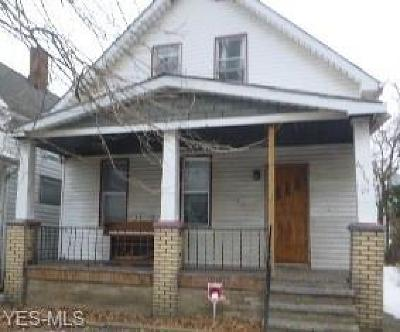 Cleveland Single Family Home For Sale: 6515 Bonna Ave