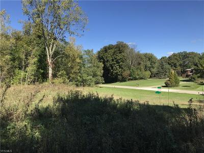 Hinckley Residential Lots & Land For Sale: 1262 River Woods Dr