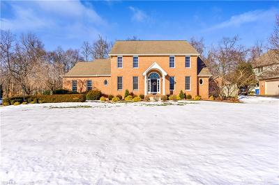 Poland Single Family Home For Sale: 7280 Cobblers Run