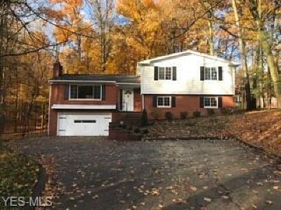 Brecksville Single Family Home For Sale: 9244 Beechwood Dr