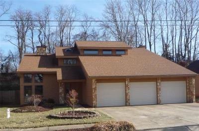 Belpre Single Family Home For Sale: 810 Ashberry