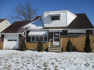 Euclid Single Family Home For Sale: 351 East 262nd St