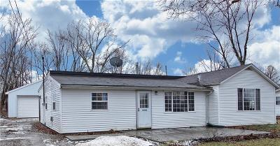 Columbia Station Single Family Home For Sale: 33643 Brokaw Rd