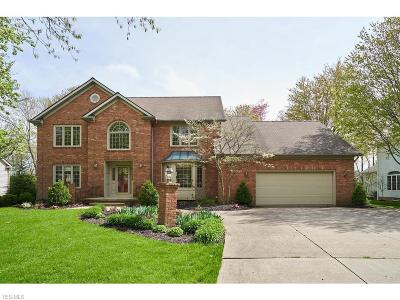 Summit County Single Family Home For Sale: 4448 Westview Dr