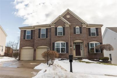 Summit County Single Family Home For Sale: 8379 Viola Way