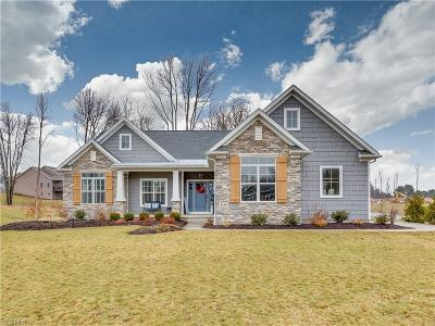 Summit County Single Family Home For Sale: 4348 Castlegate Blvd