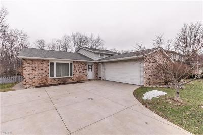Strongsville Single Family Home For Sale: 16625 Walnut Creek Dr