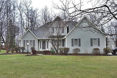 Summit County Single Family Home For Sale: 1066 Park Ledge Dr