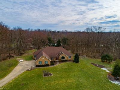 Medina County Single Family Home For Sale: 5757 Crooked Stick Dr