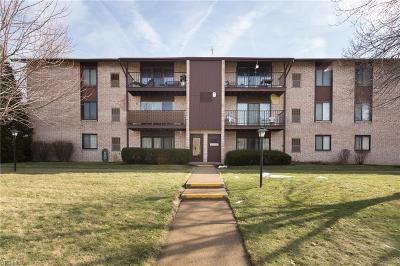 Middleburg Heights Condo/Townhouse For Sale: 16340 Heather Ln #S203
