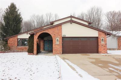 Solon Single Family Home For Sale: 32395 North Roundhead Dr