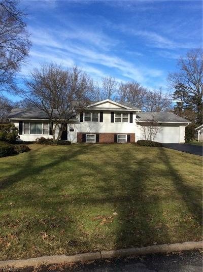 Youngstown Single Family Home For Sale: 3716 Nottingham Ave