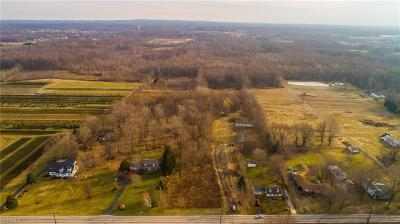 Madison Single Family Home For Sale: 5734 Middle Ridge Road