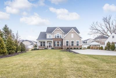 Avon Single Family Home For Sale: 35171 Detroit Rd